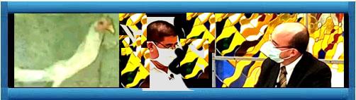 """LA DICTADURA CUBANA LE INFORMA AL PUEBLO DE LA ISLA: Programas con gallinas decrépitas y superproducción de croquetas, los planes para la """"soberanía alimentaria"""" en Cuba...     cubademocraciayvida.org                                                                                                                                                                                                                                     web/folder.asp?folderID=136"""